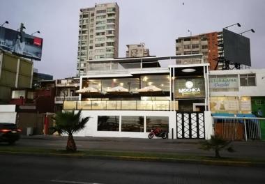 Mochica Cocina Peruana